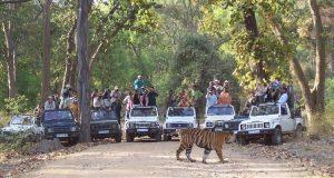 Wildlife Conservation Necessary Threats Wildlife